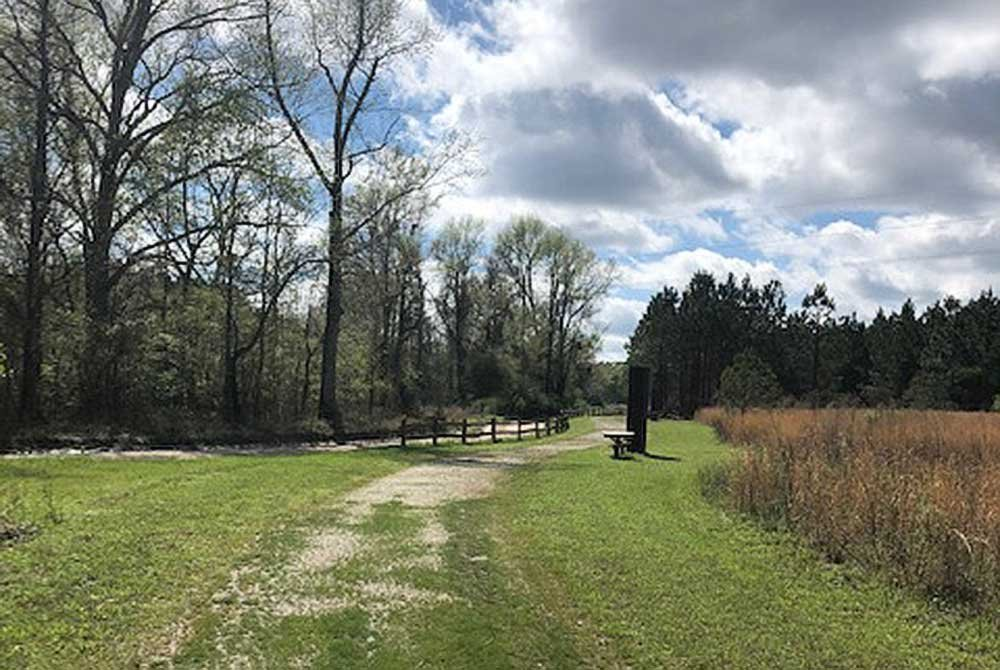Dirt path going through field