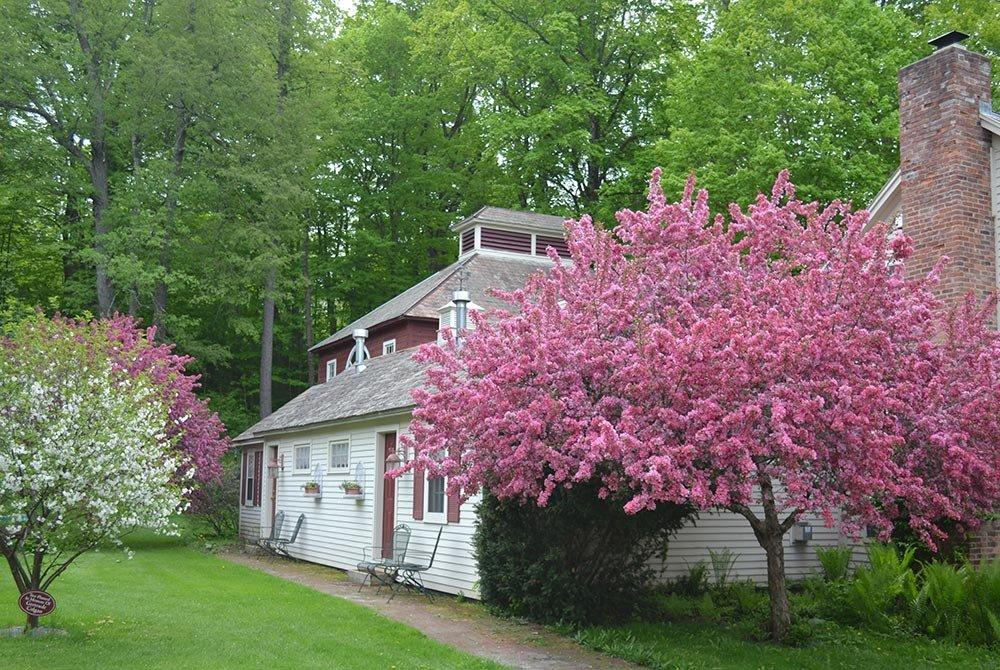 Exterior of Victoria's Garden Retreat