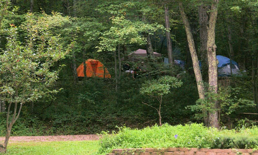 tent camp site in the woods