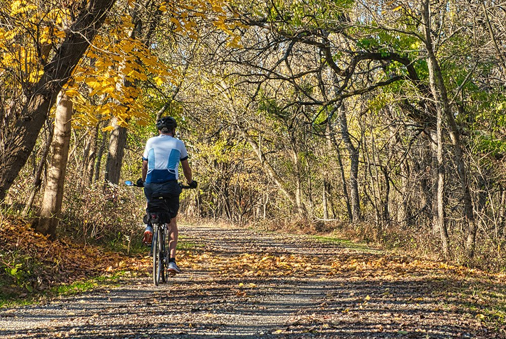 bike trail in forest