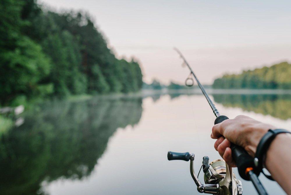 Fishing pole fishing into a lake
