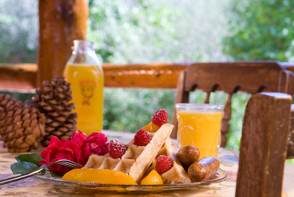 Waffle, berry, and sausage breakfast with juice on outdoor table