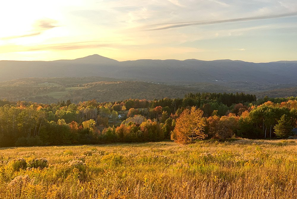field, trees, mountain in fall