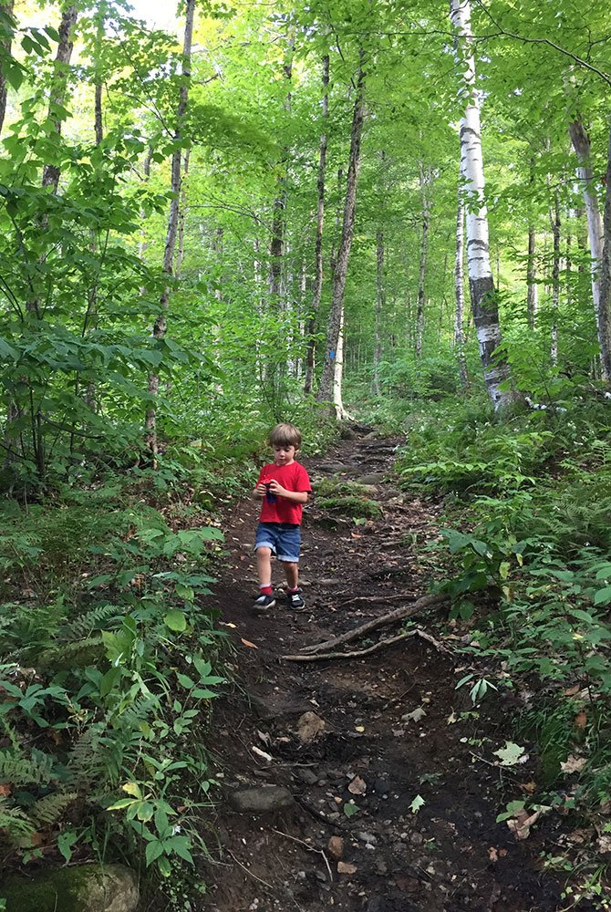 child walking on trail in forest