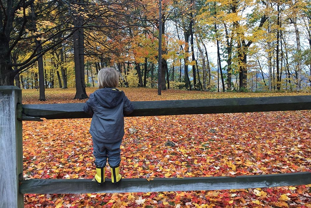 child on fence surrounded by fall leaves