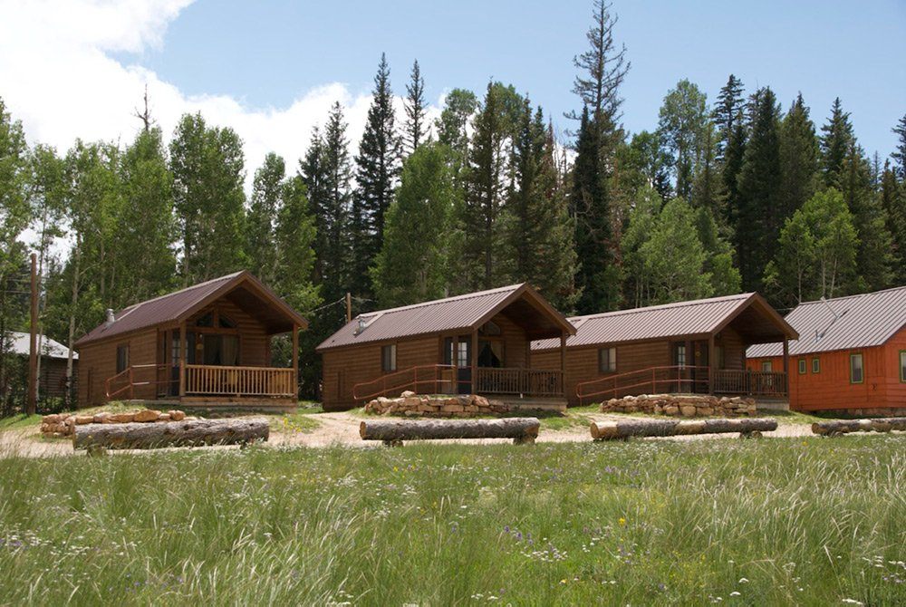 Row of cabins in front of forest