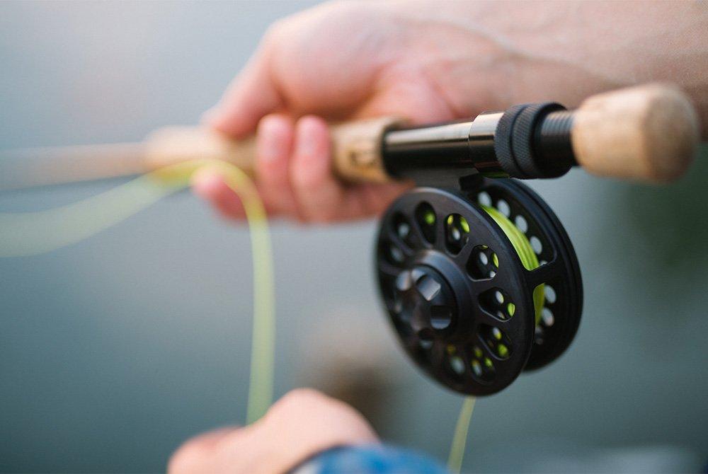 Reel on a fishing rod