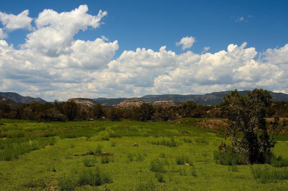 Oil Well Flats, Cañon city, CO