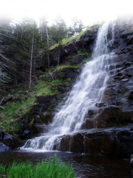 Delaps Cove Waterfall