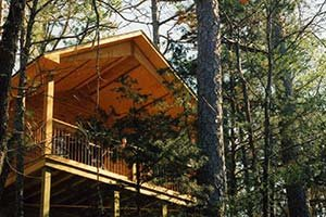 Just A Bear Getaway cabin at Eureka Sunset - Eureka Springs, AR