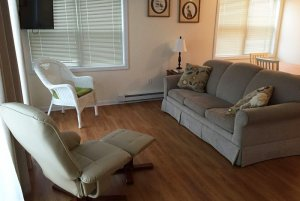 Couch and chair in living room with windows