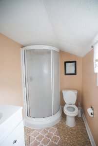Round shower next to toilet in bathroom