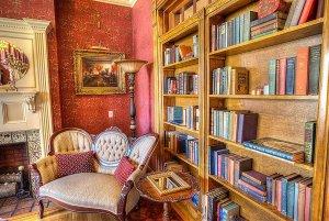 Books lining bookeshelf next to loveseat