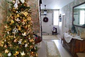 Christmas tree in main hallway