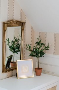Gold framed mirror above table