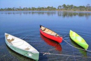 Kiaks floating in water