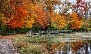 A pond with an adjacent path