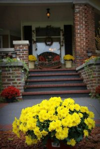 Yellow flowers and the front porch of the Inn