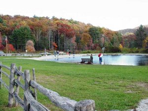 view of trout fishing pond by colorful fall leaves