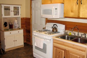 view of cabin kitchen