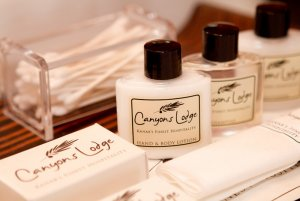 Canyons Lodge single cozy queen amenities
