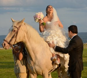 Black Walnut Point Weddings bride and groom and horse