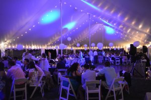 Black Walnut Point Weddings guests under tent purple light