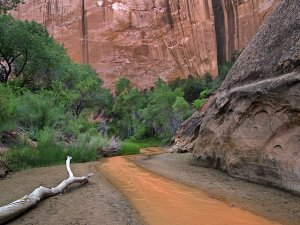 A stream flowing through a narrow canyon