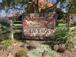 Canyons Bed and Breakfast sign near a tree covered in pink blossoms