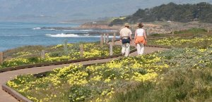 Couple walking on a path to the beach in Cambria, California