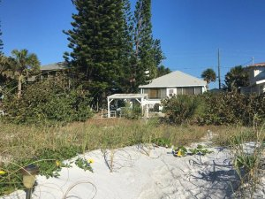 Gulf Front Cottage on the Beach