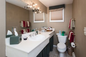 sink with skirt and toilet | The Inn at 410, near Sedona, AZ