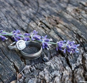 Wedding rings with a sprig of lavender