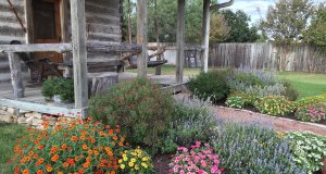 The front porch and flowerbeds