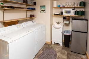 Washer and dryer with wash tub and fridge