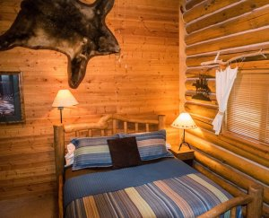 A log bedroom with a bear skin on the wall