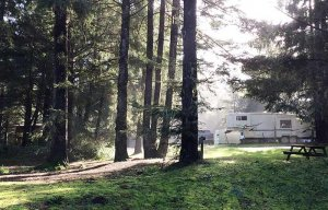 An RV parked in a forest clearing