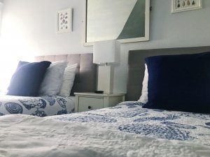 Two beds with white and blue covers