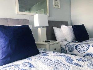 Close-up of beds