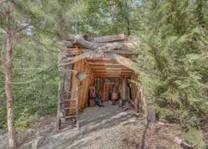 Hillbilly Hiltin Cabin Mineshaft