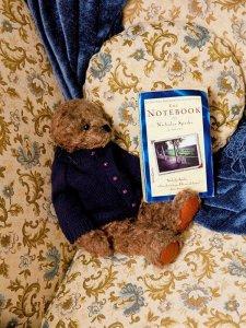 A novel and a stuffed bear