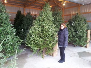 A woman with christmas trees
