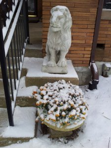 A statue of a lion and flowers