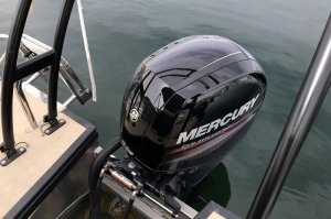 engine of 23' pontoon boat lac powell