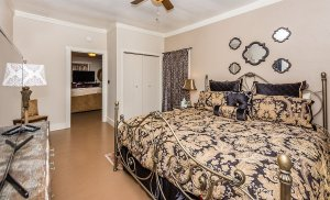 suite 1 bedroom view 3