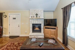 Living Area Fireplace and TV