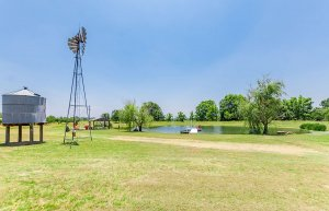 Windmill and Pond