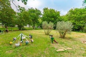 backyard bluebonnets