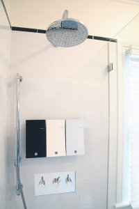 Accessible shower controls