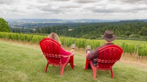 Roya Vineyard and Cottages man and woman drinking wine looking at view